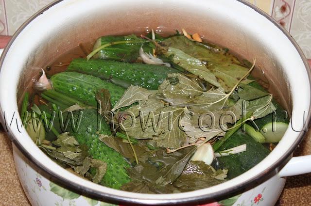 рецепт малосольных огурцов с пошаговыми фото