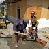 Masih di Palu, Relawan PKS Bangun Rumah untuk Korban