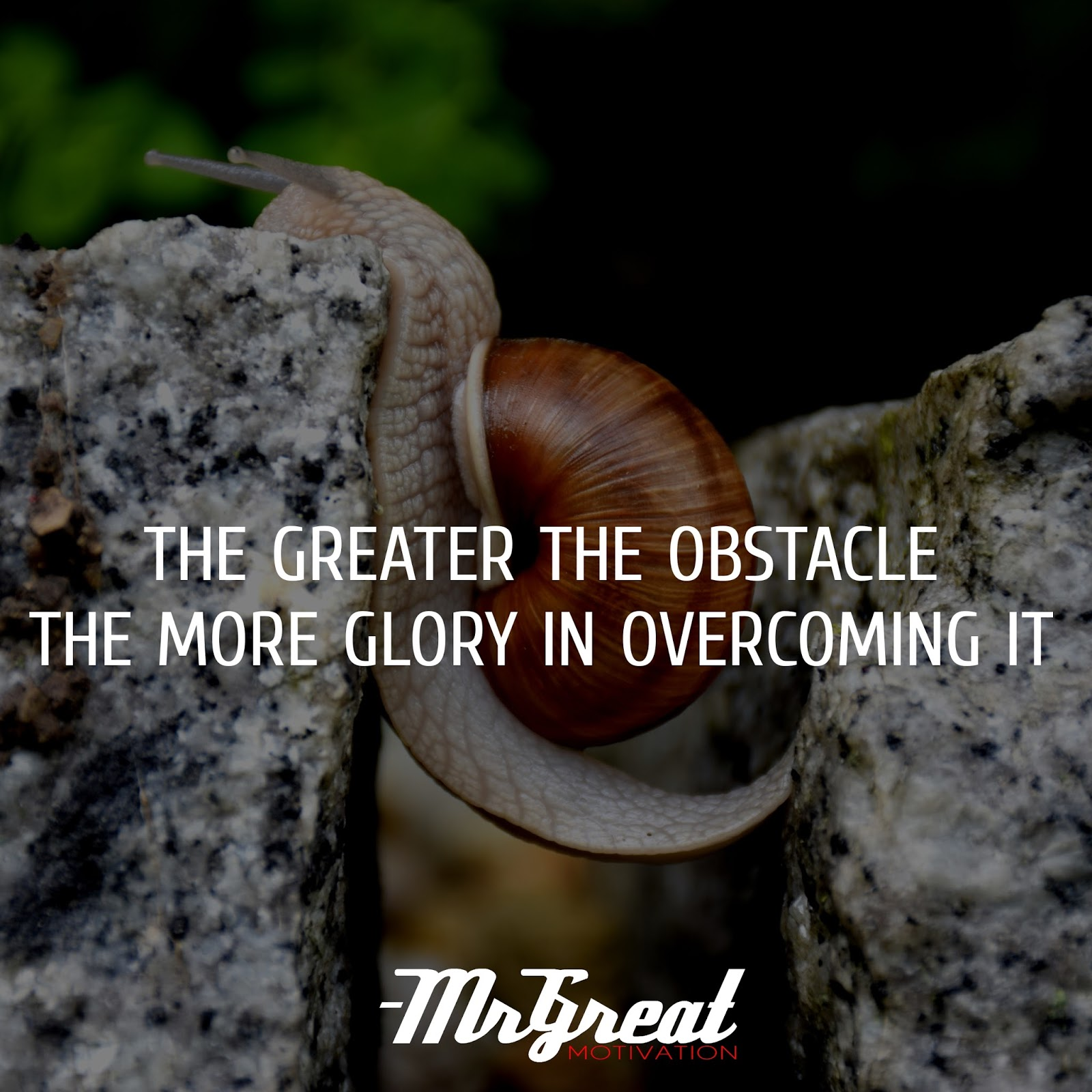 The greater the obstacle the more glory in overcoming it.