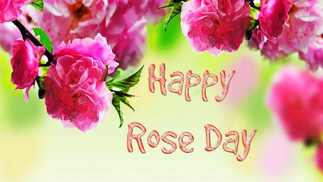 Rose-Day-wallpaper-for-free