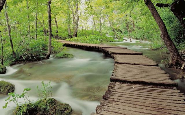جولة سياحية أجمل البلاد مستوى العالم كرواتيا بليتفيتش Walkway-in-Plitvice-National-Park.jpg