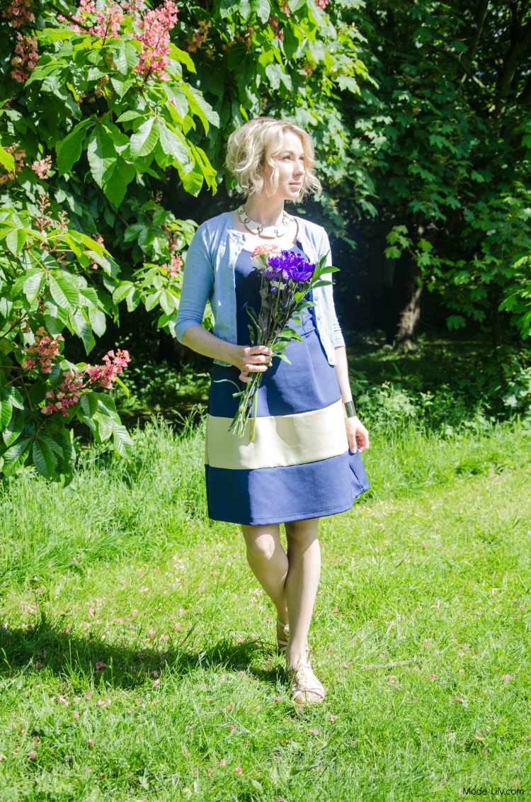 Outfit Post: Picnic in a Dress
