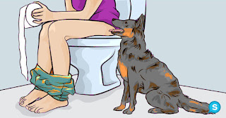 This is the reason dogs follow you into the bathroom