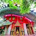 Top 10 Way Amazing Dragon House