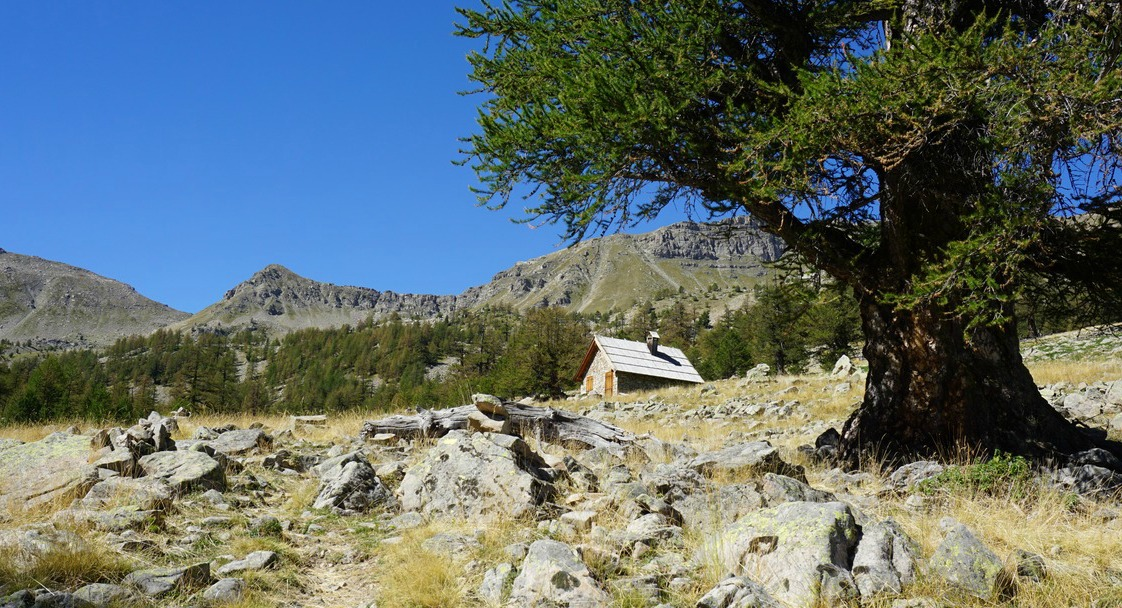 Cabane de la Braisse