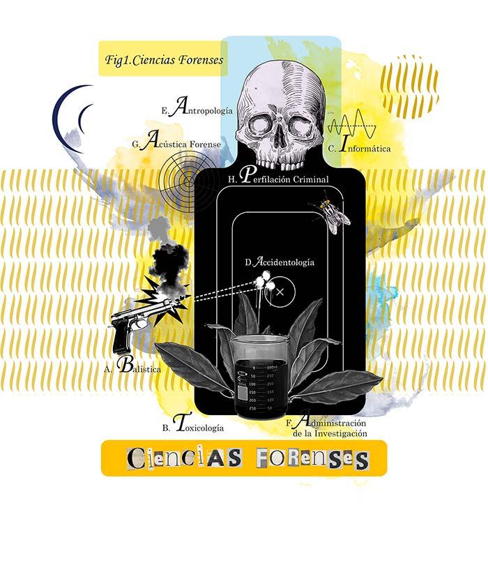 Ilustración de Juan Camilo Cadavid