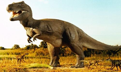 Dinozorlar Hakkında İlginç Bilgiler