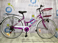 City Bike Evergreen City 6S 26 Inci