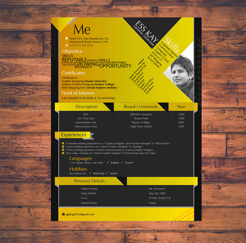 Free Clean CV-Resume Templates to Download