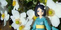 http://www.optimisticpenguin.com/2013/04/figma-tsukihi-araragi-review.html