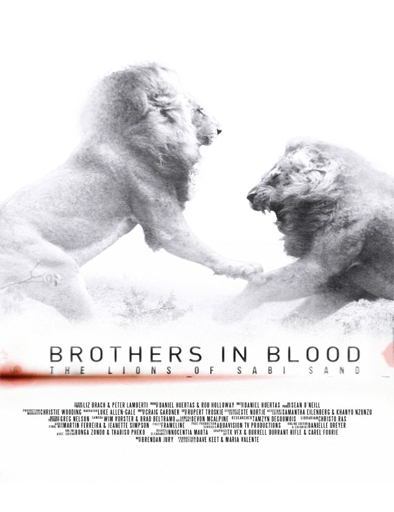 ver El rey de la manada (Brothers in Blood: The Lions of Sabi Sand) (2015) Online