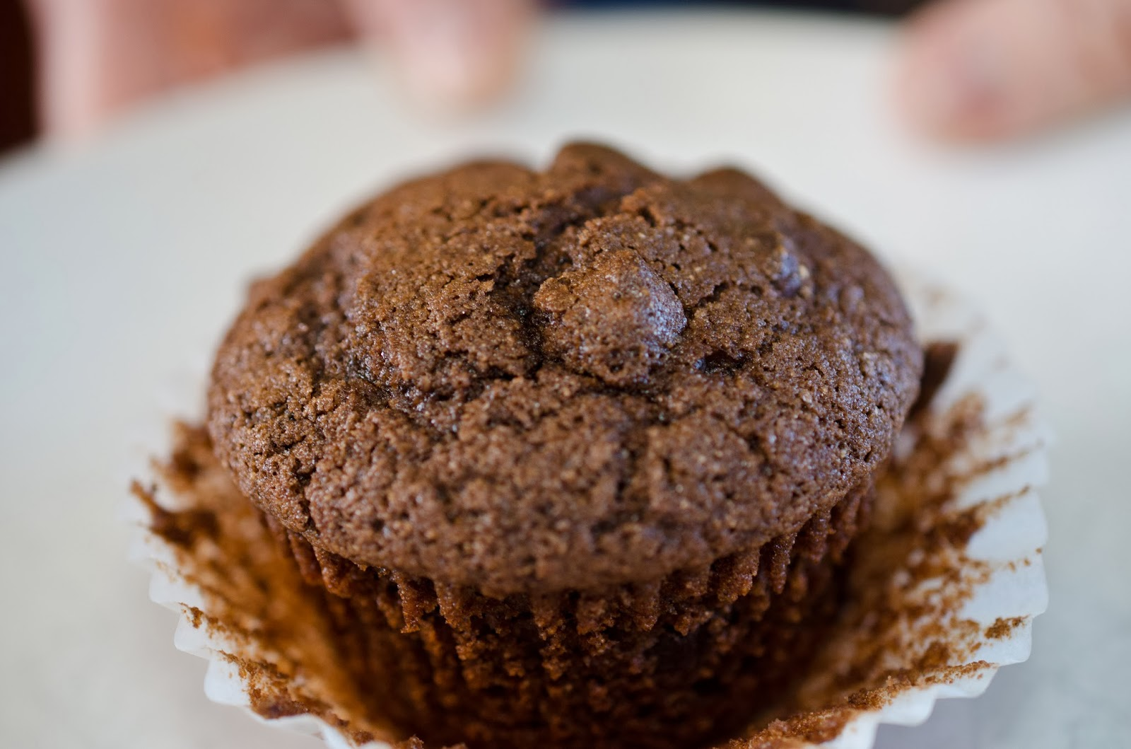 Whole Food Spelt Muffin