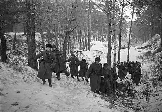 Soviet artillery near Leningrad, 1 November 1941 worldwartwo.filminspector.com