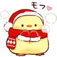 Soft and cute chick(winter)