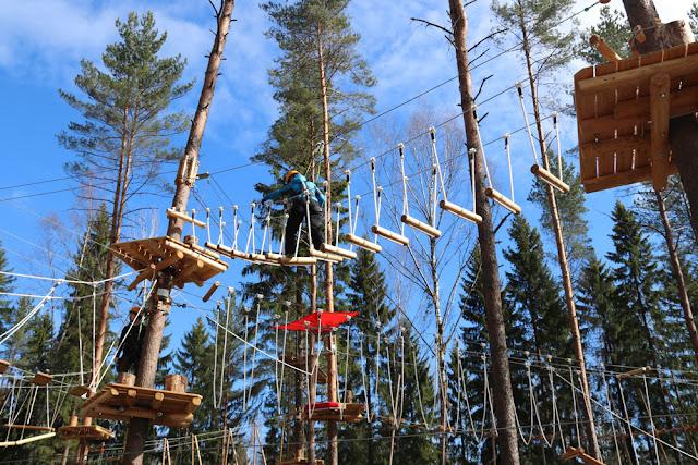 Uusi köysiseikkailupuisto avattiin Helsingin Paloheinään 19