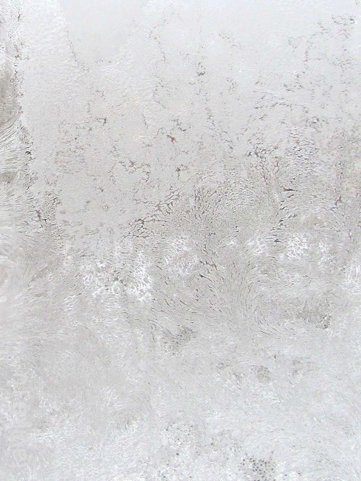 морозные узоры на окнах