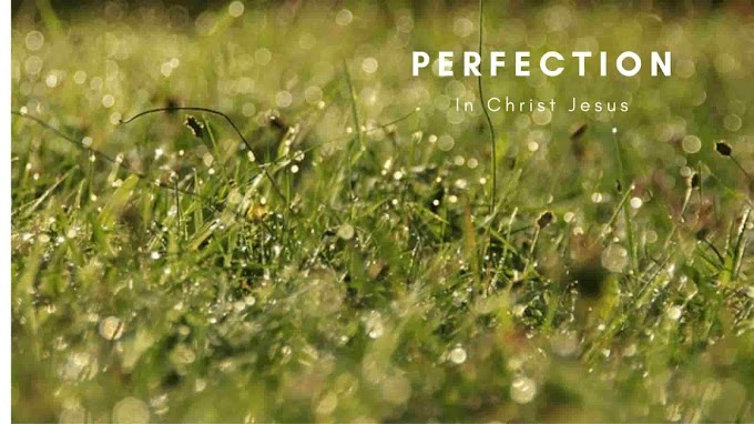Perfection In Christ Jesus