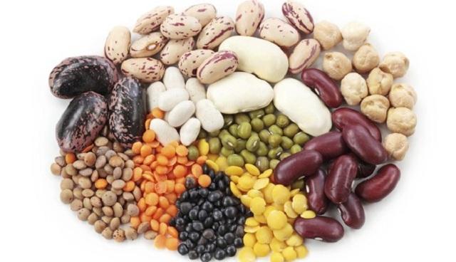 jenis kacang kacangan untuk ibu hamil