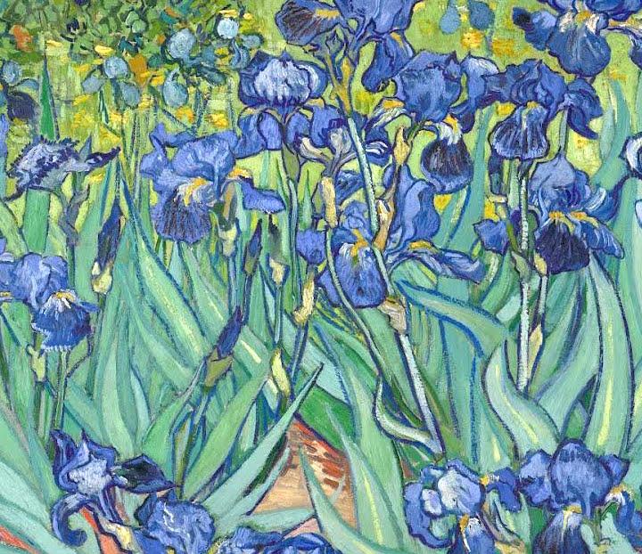 Art talk julie ford oliver vincent 39 s irises and fruit for Van gogh irises