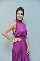 Mehreen Kaur Pirzada Hot Picture in Purple Dress