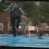 Ρουμάνος μάγος περπατάει στο νερό! (Βίντεο)