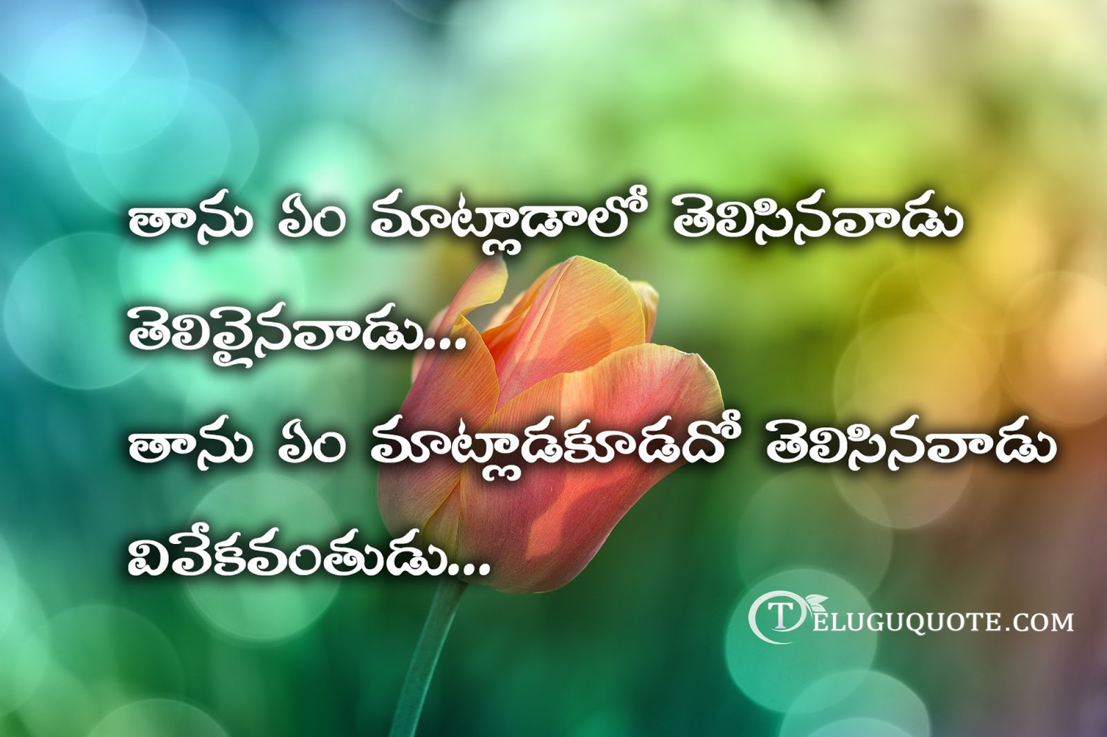 Latest Quotation Images In Telugu Download - love quotes