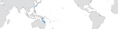 persebaran pertumbuhan coral Acropora Azurea