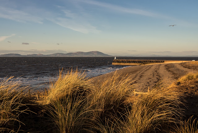 Photo of winter sun on the grasses above the beach at Maryport