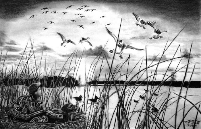 Рисунки карандашом. Peter Piatt 7
