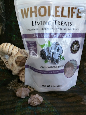 Antioxindant freeze dried dog treats