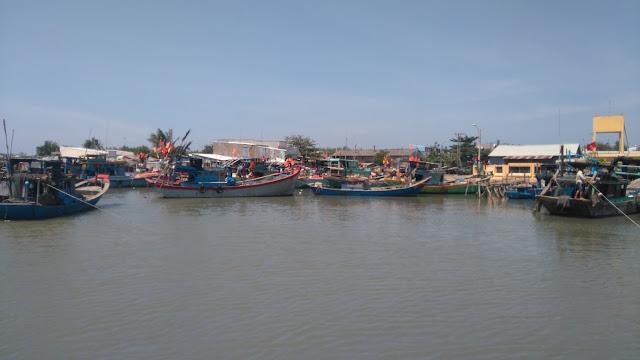 Du Lịch Bụi xã đảo Thạnh An
