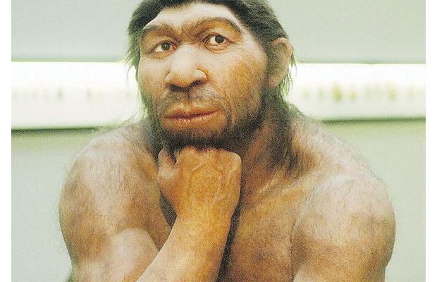 Neanderthals And Dark Chocolate