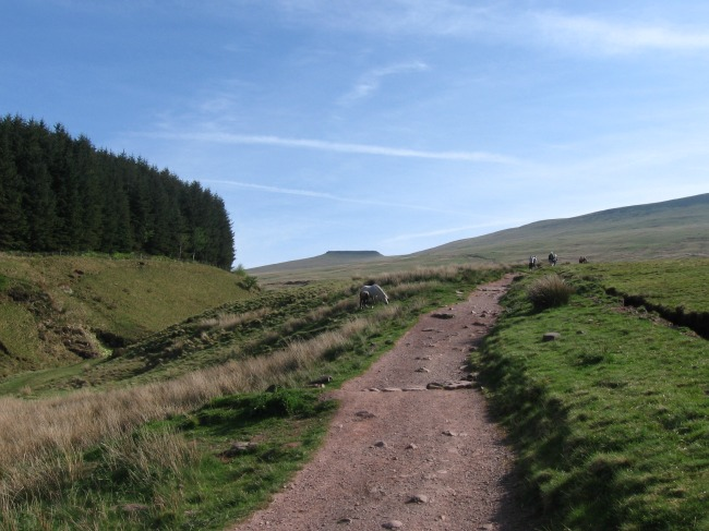 Walks-in-South-Wales-Pen-Y-Fan-image-of-foot-path-with-pen-y-fan-in-background