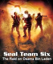 Seal Team Six: The Raid on Osama Bin Laden (Hindi)