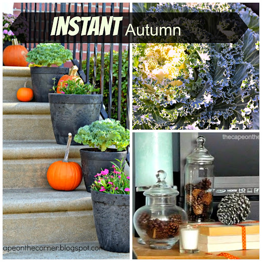 Let's start a campaign for Instant Autumn