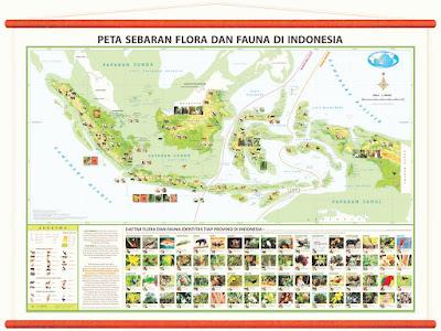 Pembagian Persebaran Flora dan Fauna di Indonesia Pembagian Persebaran Flora dan Fauna di Indonesia