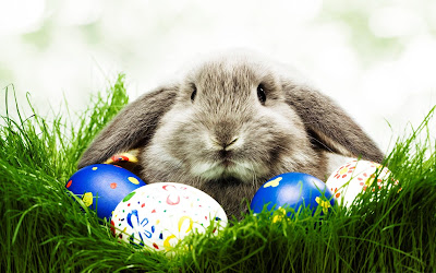 we%2Bcopy - Happy Easter 2017 Greetings   pictures   images