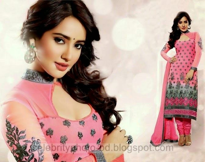 Indian Formal Straight Line Salwar Suits Collection 2014 For Girls In Eid Ul Fitr
