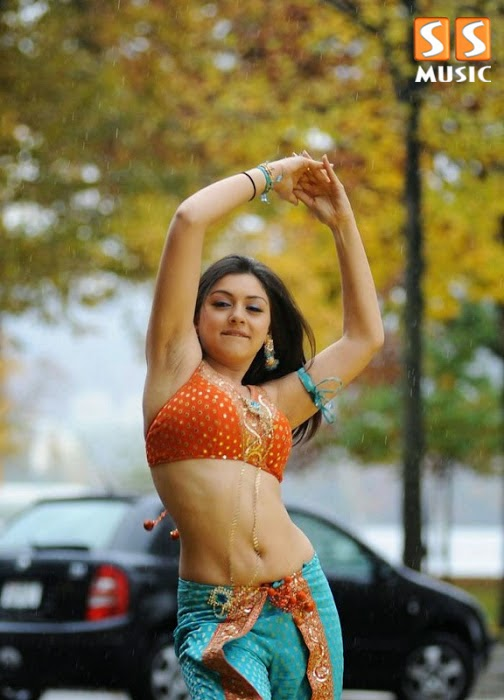 Hot Navel Actress Hansikas Hot Photoshoot HD Wallpaper