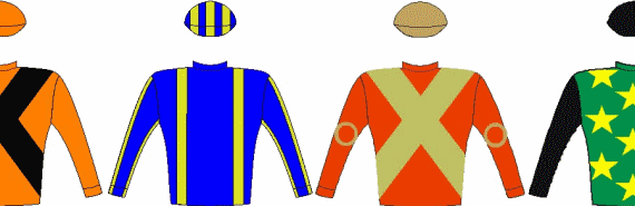 Vodacom Durban July 2016 - Colours and Silks