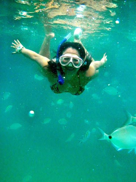 Mergulho na Lagoa Azul, Angra dos Reis