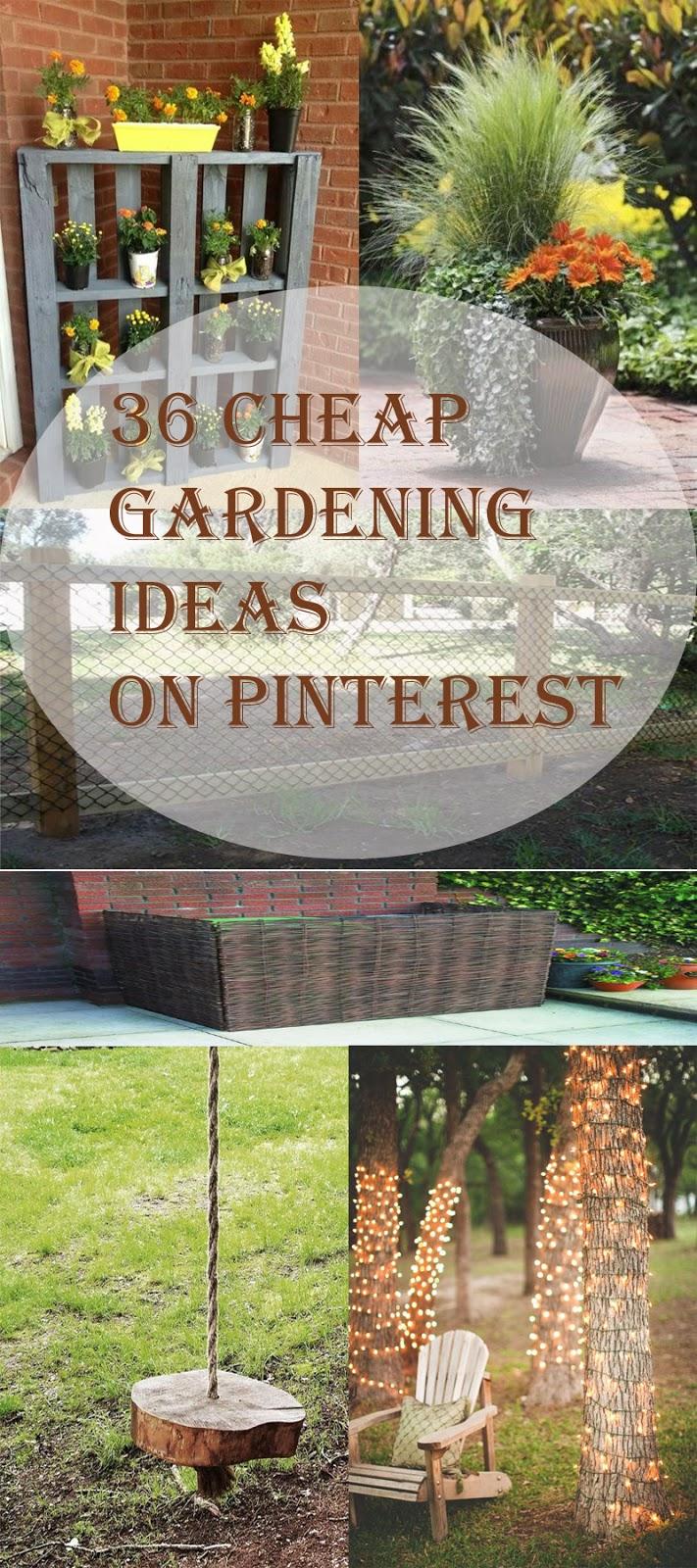 36 Cheap Gardening Ideas on Pinterest - A Blog on Garden on Cheap Back Garden Ideas id=51857