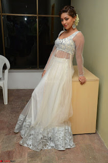 Anu Emmanuel in a Transparent White Choli Cream Ghagra Stunning Pics 010.JPG