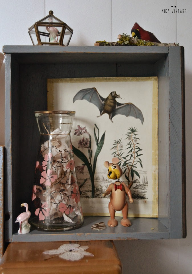 vintage, cajones madera, cajón antiguo, decoración, grabados ciencias naturales, botánica