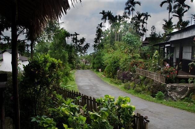 Desa Mawlynnong