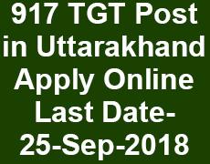 917 PGT Post in Uttarakhand | Job Portal Uttarakhand | Exam