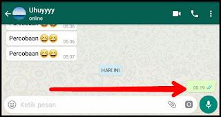 2 Cara Mengirim Pesan Kosong di WhatsApp Tanpa Aplikasi dan Dengan Aplikasi