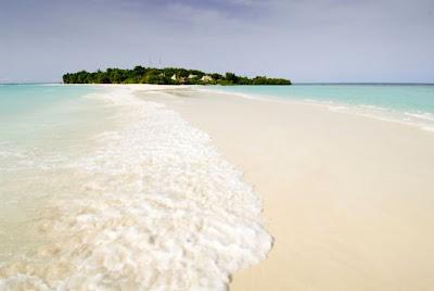 Resort de ensueño junto a la playa.
