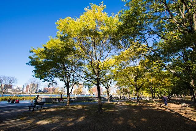 Charles river esplanada-Boston