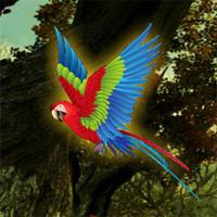 WOW Macaw Fantasy Escape
